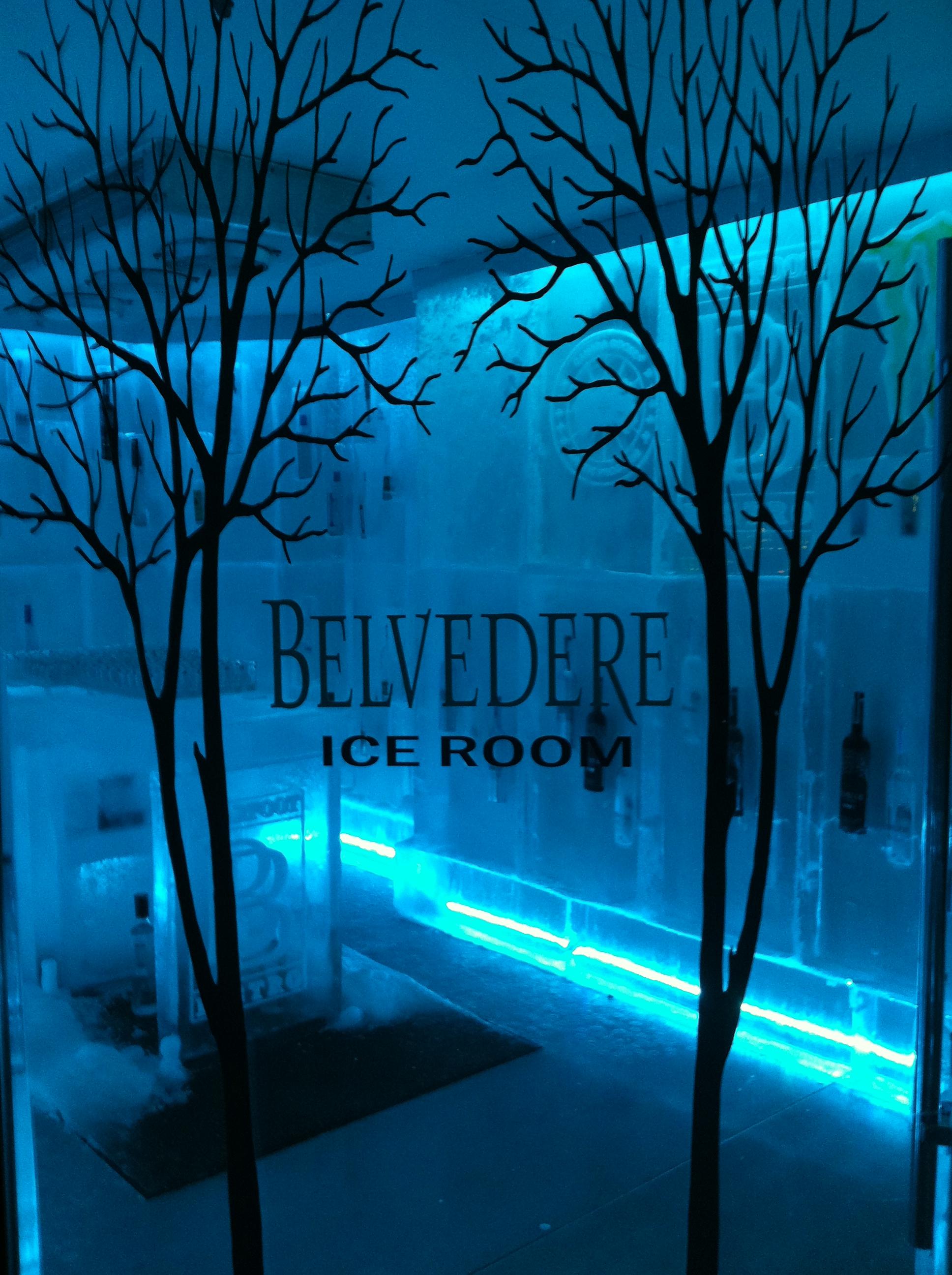 Belvedere Ice Room Whistler
